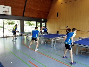 Trainingstag 2015-4